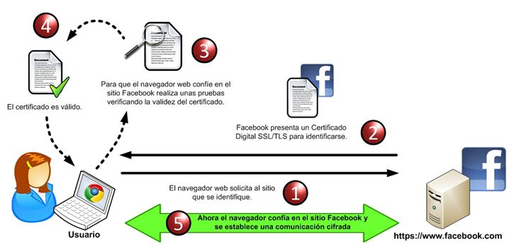 por-que-necesitas-un-certificado-SSL-para-tu-ecommerce002